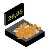 маштаб мяса цыпленка Стоковое фото RF
