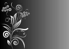 маштаб цветка предпосылки серый Стоковое Изображение
