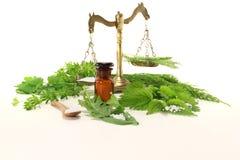 маштаб homeopathy apothecary стоковая фотография