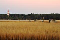 Маяк и болото Assateague на сумраке Стоковое Изображение RF
