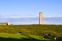 маяк старый wicklow Ирландии Стоковое Изображение RF
