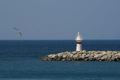 маяк с чайкой Стоковые Изображения RF