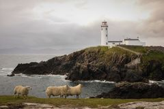 маяк fanad головной Графство Donegal Ирландия стоковые фотографии rf