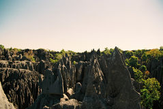 Мадагаскар tsingy Стоковое Изображение RF