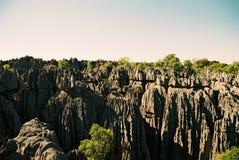 Мадагаскар tsingy Стоковые Фотографии RF