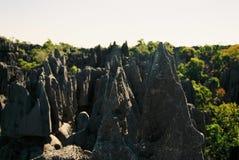 Мадагаскар tsingy Стоковая Фотография