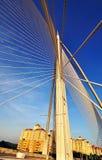 Малайзийский мост, картина и дизайн Стоковые Фотографии RF