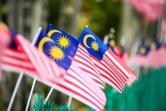 Малайзийский флаг Стоковые Изображения RF