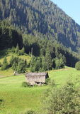 Малая лачуга в поле сена на горном склоне в Alpes стоковые изображения