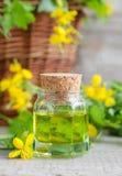 Малая бутылка вливания celandine Стоковое фото RF