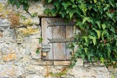 Малая дверь в стене Стоковые Фотографии RF