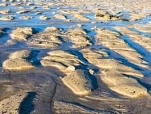 Малая вода формируя органические структуры в песке Стоковые Фотографии RF