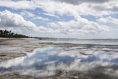 малая вода zanzibar Стоковое Изображение RF