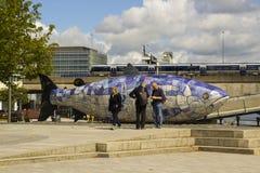 Малая группа в составе туристы беседует совместно и сравнивает примечания около семг скульптуры Белфаста рыб знания Стоковое Изображение