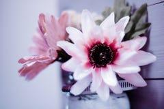 Малая глубина цветка ткани поля на деревянной рамке предкрылка Стоковая Фотография RF