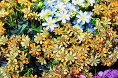 Малая желтая предпосылка цветка стоковые изображения