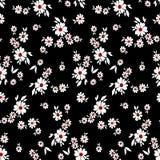 Малая картина цветков 091 Стоковые Фотографии RF