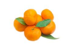 Малая куча апельсинов мандарина Стоковое Изображение