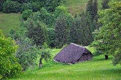 Малая ложа, лачуга в середине леса стоковое фото rf
