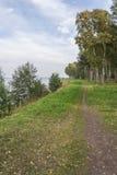 Малая дорога в древесины Стоковое фото RF