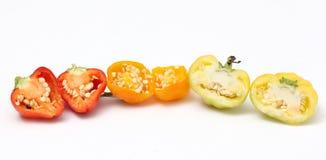 Малая паприка колокола chili на белой предпосылке Стоковая Фотография RF