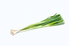 Малая пачка зеленых луков стоковые изображения