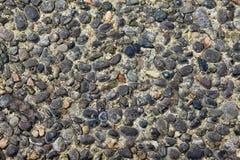 Малая предпосылка камней стоковая фотография rf