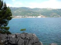 Малая сосна на предпосылке моря и гор Стоковое Изображение