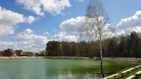Малая уютная деревня, около пруда, леса и солитарной березы на переднем плане Стоковые Фото