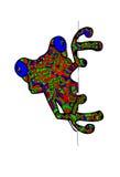 Малая лягушка на белой предпосылке Стоковое Изображение