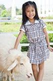 Маленький азиатский представлять девушки. стоковое фото rf