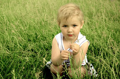 Маленькая белокурая девушка сидя в зеленой траве стоковая фотография