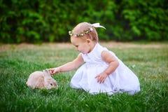 Маленькая девочка в белом платье играет с кроликом в парке стоковое фото rf