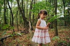 Маленькая девочка в лесе с папоротниками Стоковые Фото