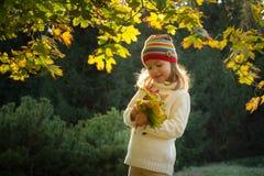 Маленькая девочка в парке осени Стоковое фото RF