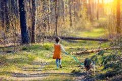 Маленькая девочка гуляя с собакой Стоковое Изображение