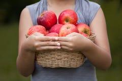 Маленькая девочка держа корзину яблок Стоковые Изображения RF