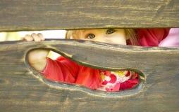 Маленькая девочка играя прятку стоковое фото rf