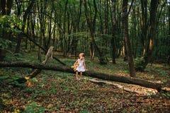 Маленькая девочка играя с ее медведем в древесинах девушка сидя дальше Стоковая Фотография RF