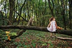 Маленькая девочка играя с ее медведем в древесинах девушка сидя дальше Стоковые Изображения RF