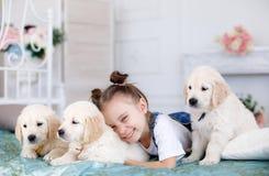 Маленькая девочка играя с Retriever щенят Стоковое Изображение