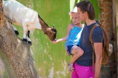 Маленькая девочка и ее папа играя в зоопарке с a стоковое фото rf