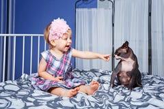 Маленькая девочка и кот сфинкса Стоковые Фото