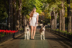 Маленькая девочка идя вниз с улицы с 2 собаками Стоковые Фото