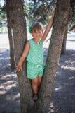 Маленькая девочка между 2 соснами стоковое фото rf