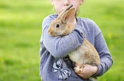 Маленькая девочка на улице для того чтобы держать кролика в реальном маштабе времени Стоковая Фотография RF