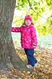 Маленькая девочка около дерева Стоковая Фотография