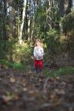Маленькая девочка собирает грибы Стоковая Фотография RF