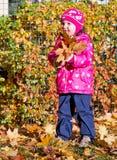 Маленькая девочка с желтыми листьями Стоковая Фотография RF
