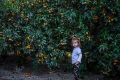 Маленькая девочка с мандарином Стоковые Фото